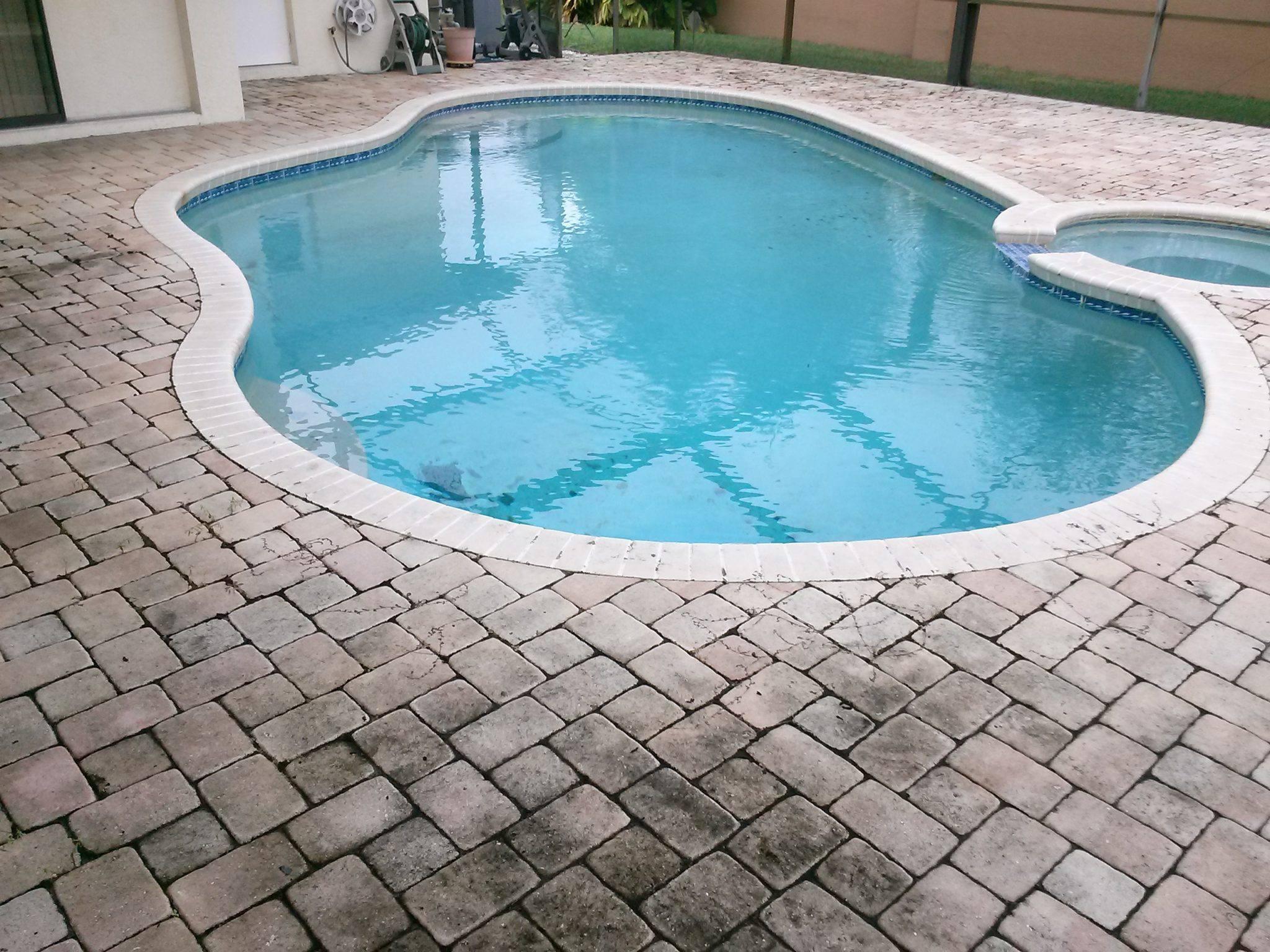 Pressure washing services oldsmar florida for Pressure clean pools