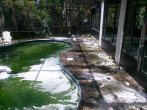 Neglected pool deck in Tarpon Springs