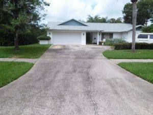 Tarpon Springs driveway cleaning before