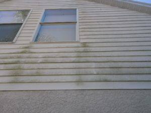 palm harbor low pressure house wash before