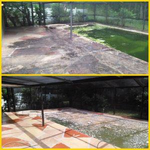 pool deck cleaning in tampa