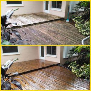 wood deck dunedin