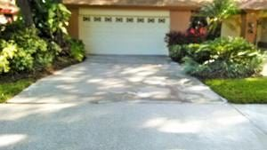 Clean driveway in Safety Harbor, Fl